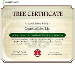 OneTreePlanted Certificate